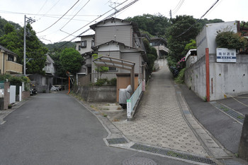 DSC_8188_304.JPG
