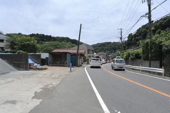 DSC_8634_355.JPG